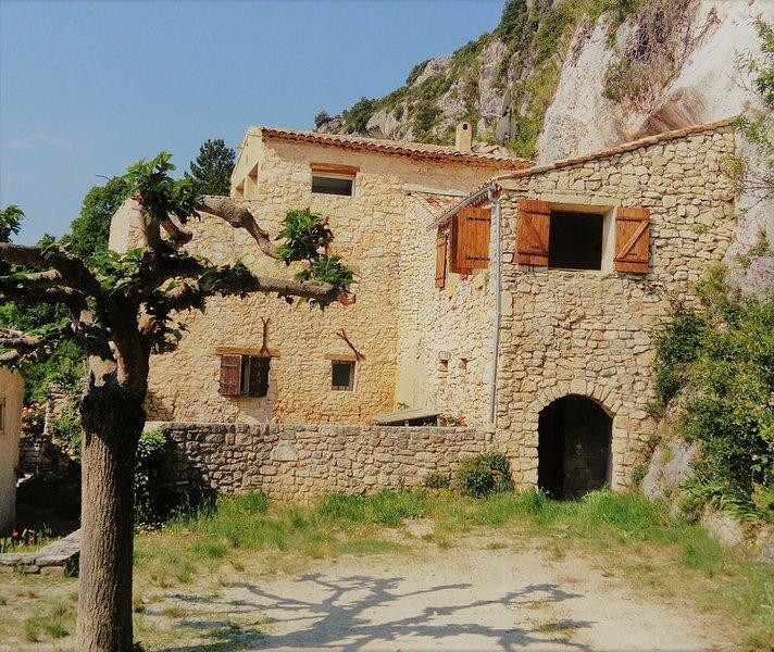 Maison de village  au sud du Mont-Ventoux sur la route des lavandes., vacation rental in Sault