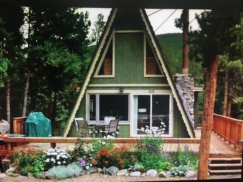 Fabulous Chalet 1/2 mile from Main Street, Great Location, vacation rental in Breckenridge