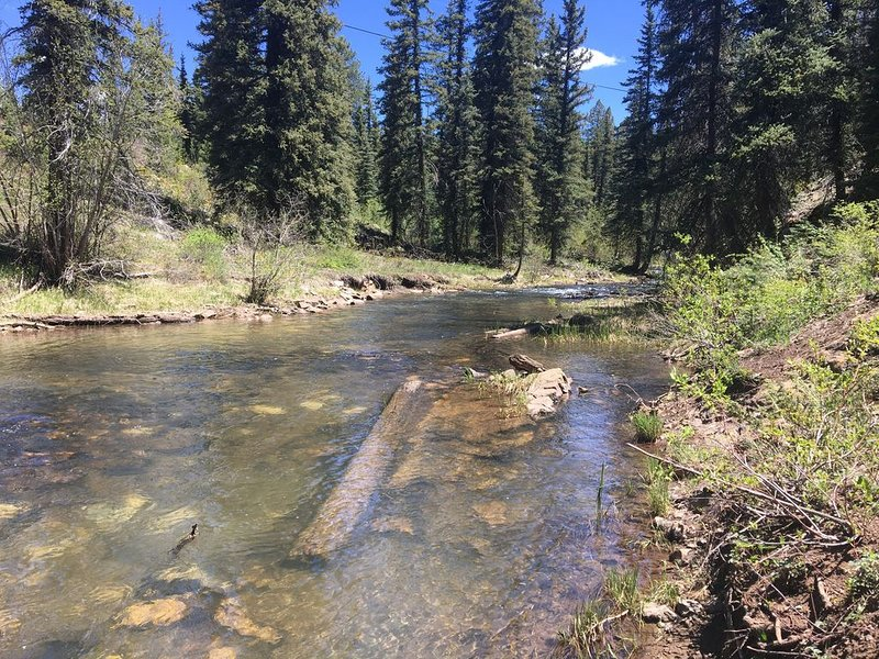 up stream 200 yrds, not many open spots for fly fishing, unless you're good.