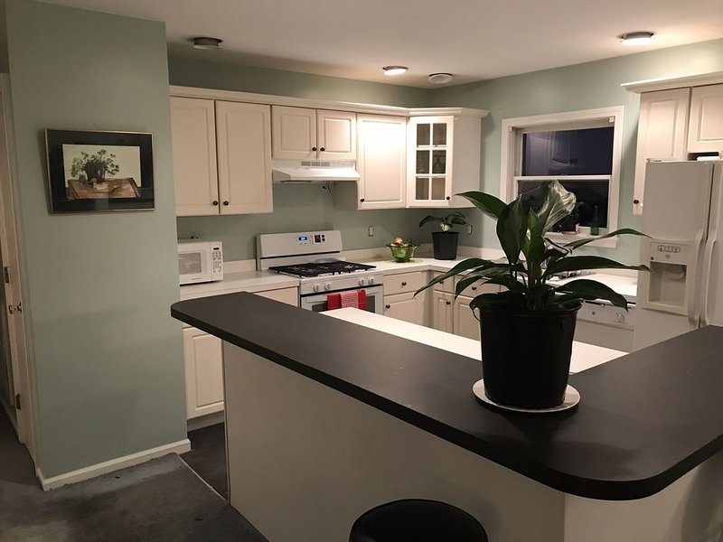 Hatteras Village Property with 2 bedrooms, big kitchen, vacation rental in Hatteras