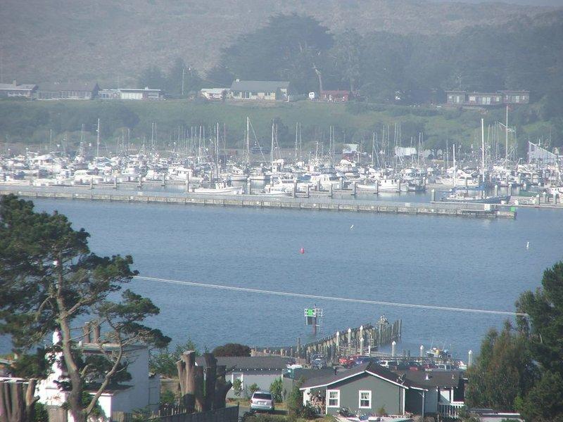 Port de Bodega