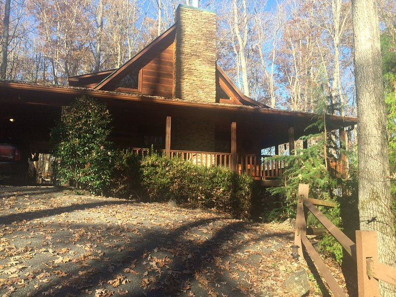Big Buck Cabin -Close to Young Harris College & Brasstown Valley Resort, vacation rental in Young Harris
