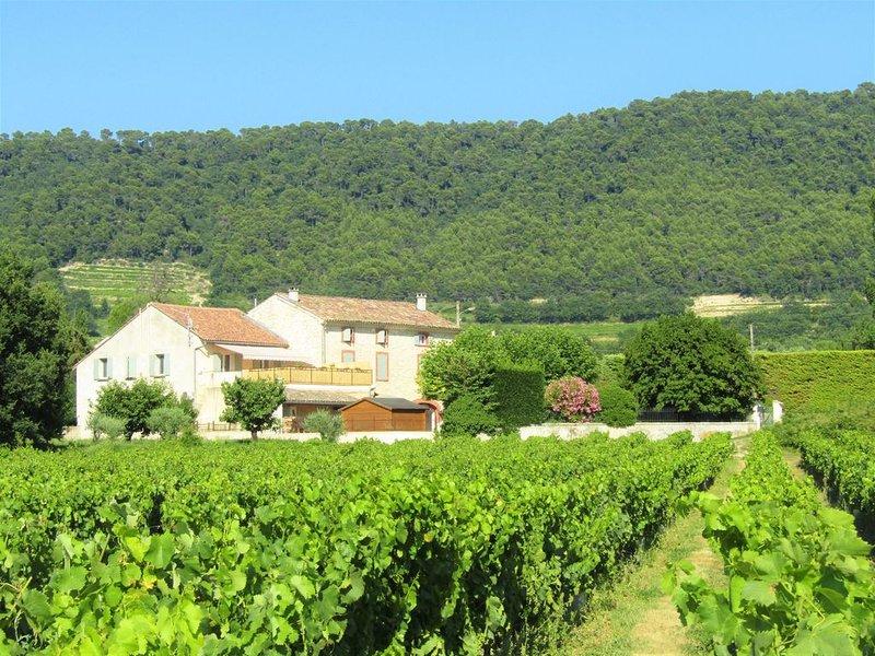 Gîte familial jusqu'à 6 p. Coeur des Vignes et Dentelles de Montmirail, location de vacances à Sablet