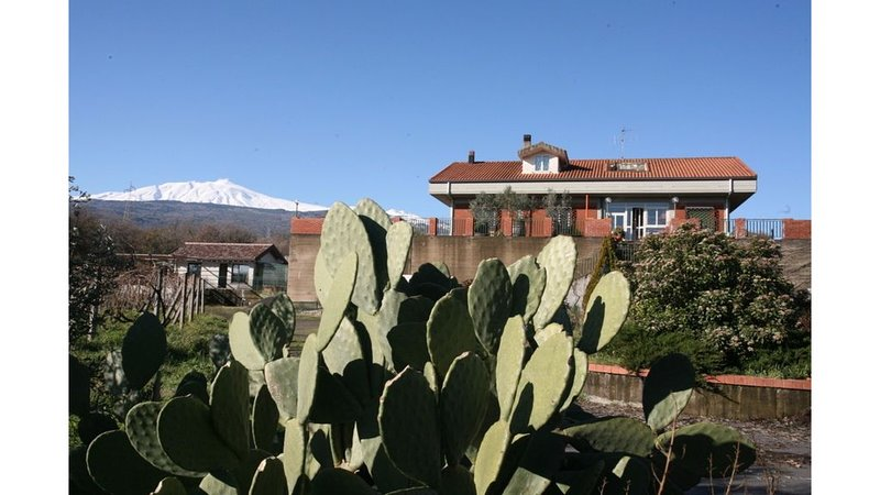 Magnificent View, Permaculture fruit and veggies, on Mount Etna, Sicily, holiday rental in Passopisciaro