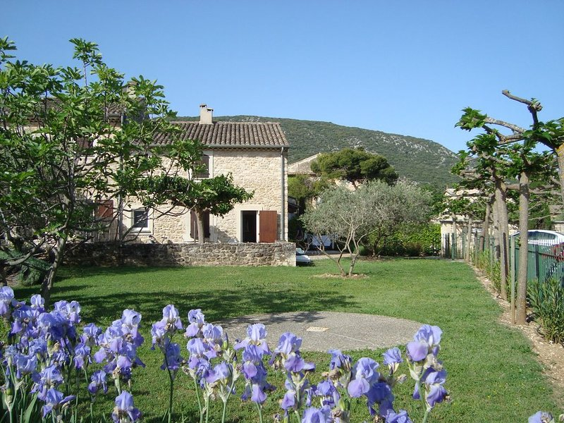 Former vineyard, now converted into beautiful holiday homes - in the heart of Pr, holiday rental in Coustellet