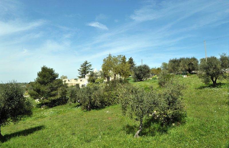 Trullo con terrazza panoramica immerso nelle campagne della Val d'Itria, casa vacanza a Sorbola
