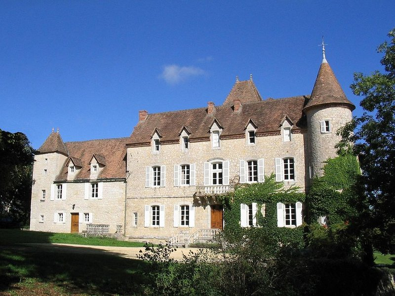 Chateau with Private Pool, Floodlit Tennis, Grand Pianos, WIFI, holiday rental in Séniergues