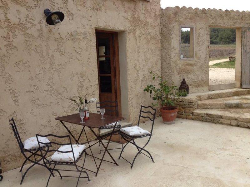 Gite MERVEILLEUX avec piscine au milieu des oliviers, entouré de vignes, vacation rental in Caromb