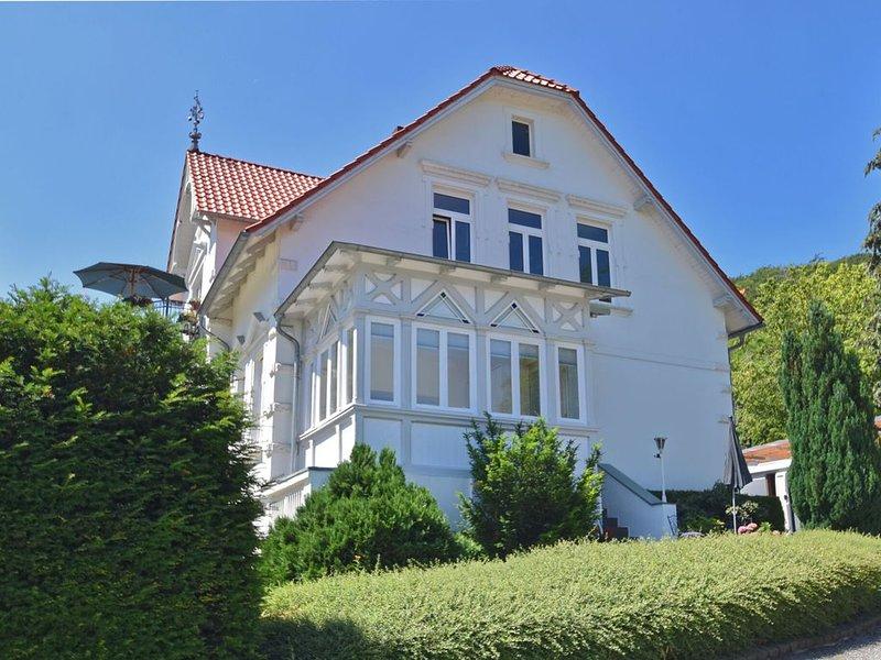 Bright ground floor apartment in Blankenburg in the Harz Mountains with wood sto, holiday rental in Neuwerk