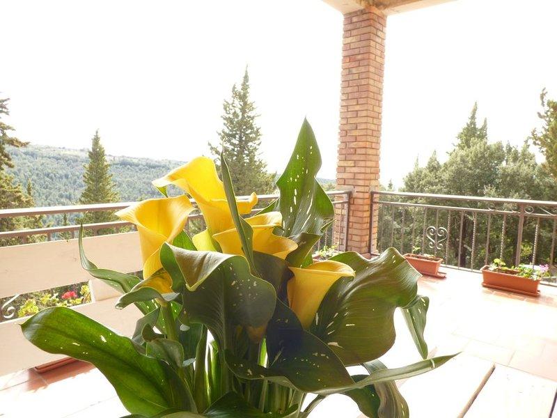 Casa Bruna- Cipresseta del Chianti, holiday rental in Isole