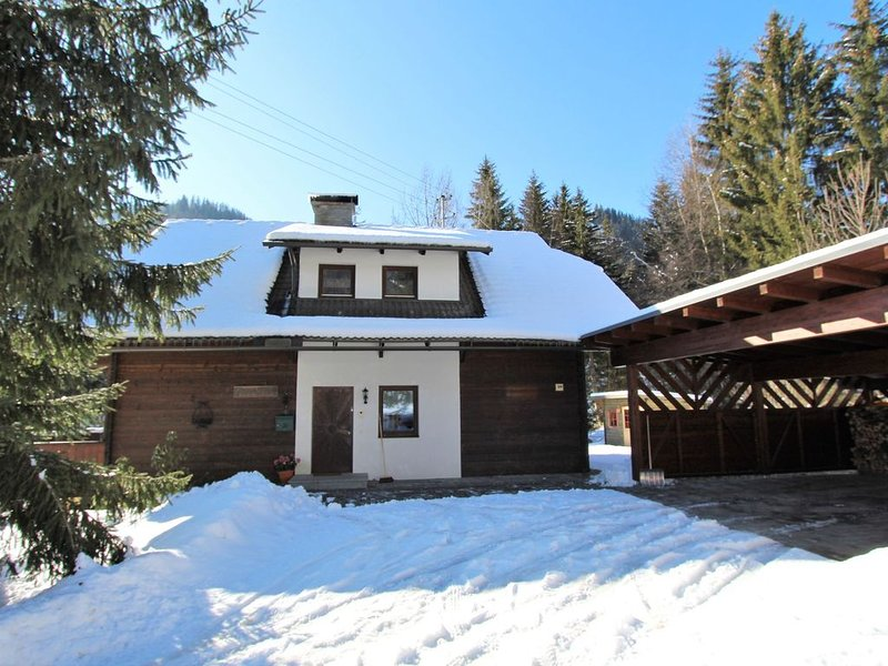 Very spacious, detached holiday home in Carinthia, near skiing areas and lakes, holiday rental in Sirnitz-Sonnseite