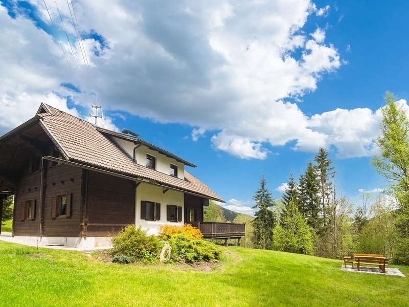 Very spacious, detached holiday home in Carinthia, near skiing areas and lakes, vacation rental in Gnesau