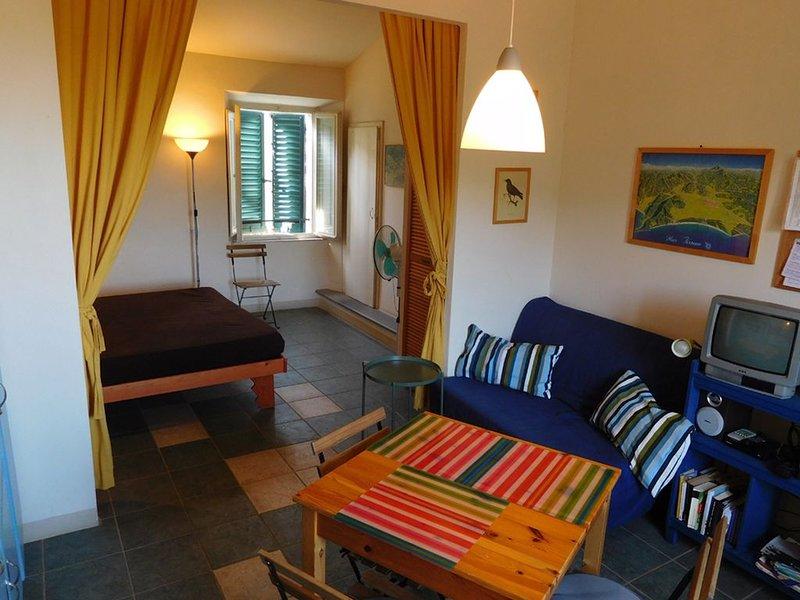 Rondine, appartamento panoramico e silenzioso in Maremma, holiday rental in Vetulonia