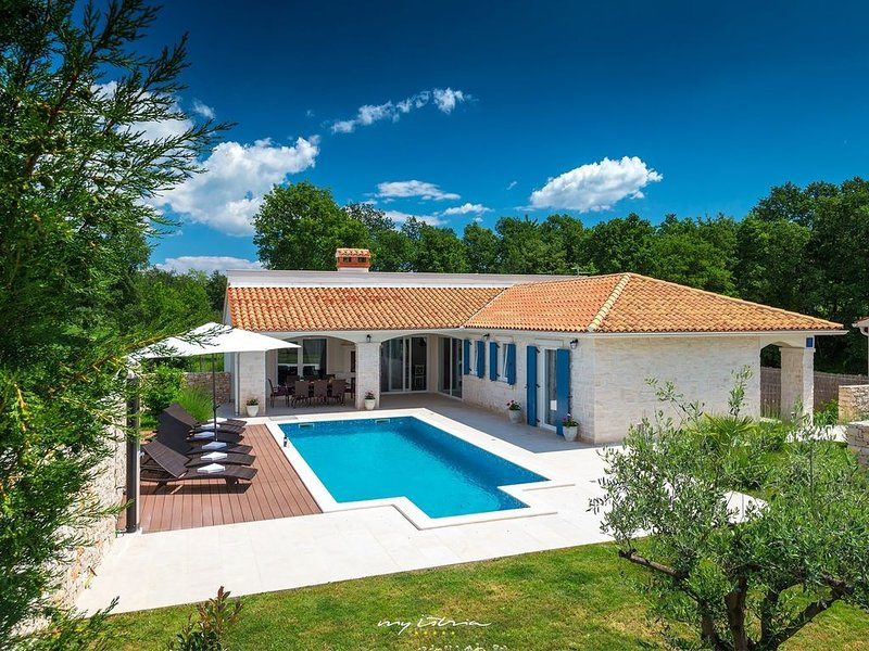 Delightful villa with pool near Rabac, vacation rental in Sumber