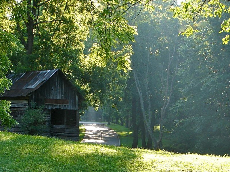 The Cabin at Stoney Hollow Farm, alquiler de vacaciones en Robbinsville