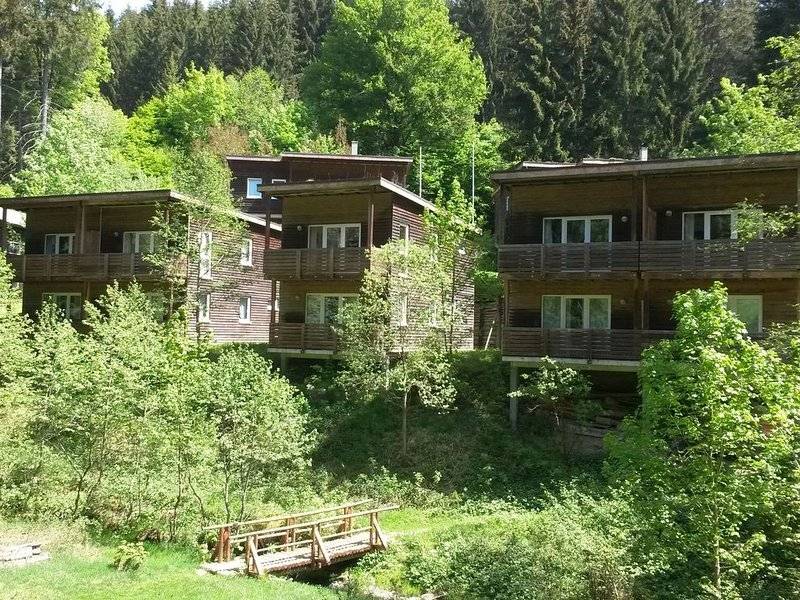 Holiday home in the Großbreitenbach, location de vacances à Lauscha