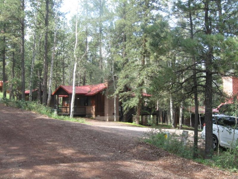 East Fork Cabin 2   Rent for 7 nights, pay for 6.  Near the Little Colorado!, aluguéis de temporada em Greer
