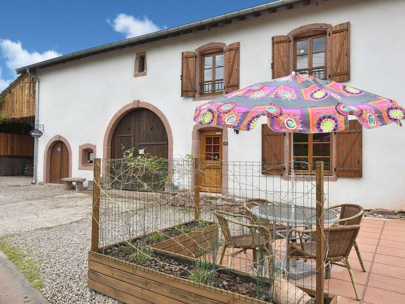 Apartment in Saint-Dié-des-Vosges with terrace, Ferienwohnung in Taintrux