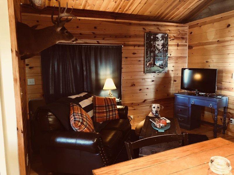 Rustic log cabin in the beautiful Wyoming Black Hills!, holiday rental in Sundance