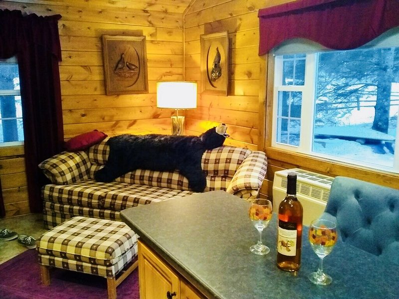 Cozy Beautiful Cottage on Maple Lake!, location de vacances à Three Lakes