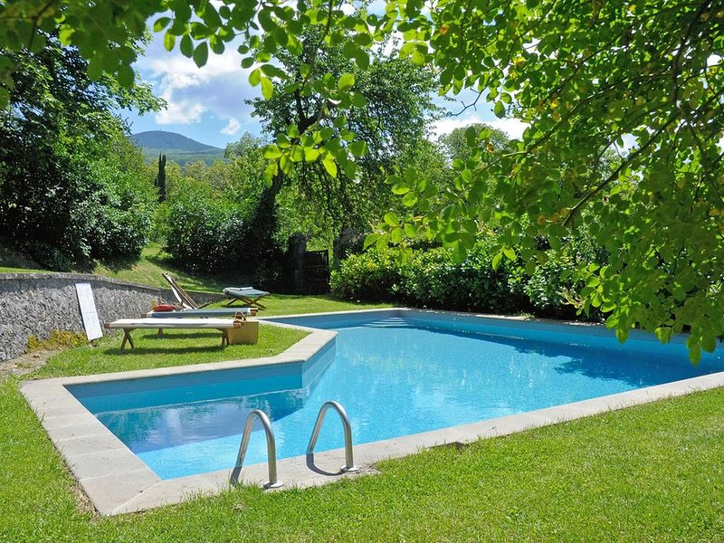Lovely Artisan Tuscan Country House Walking Distance to Village - Pool & Wifi, vacation rental in Bagni di San Filippo