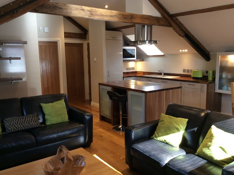 Contemporary Barn conversion set on the edge of The Howardian Hills, vacation rental in Burythorpe