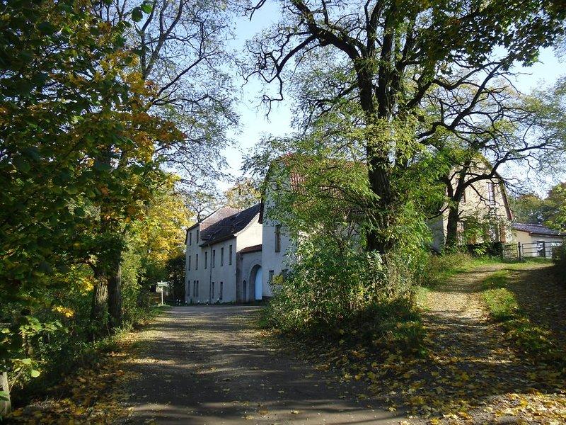 Wassermühle, Hofladen , Natur , 30 min von Berlin, holiday rental in Markisch Buchholz