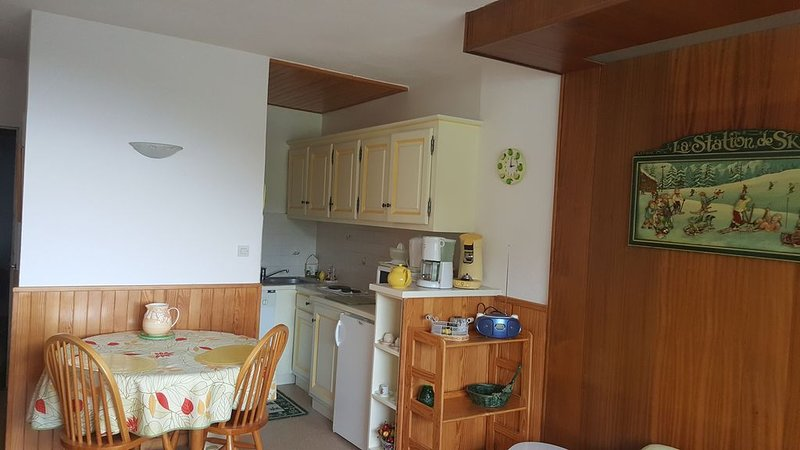 Studio classé 3* pour 2 personnes, holiday rental in Besse-et-Saint-Anastaise