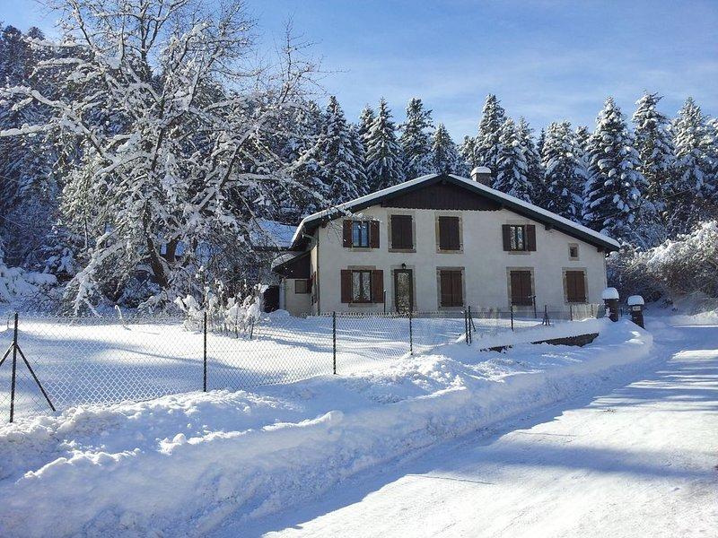 Appartement  4 personnes dans maison de caractère, jardin,calme, à Gerardmer, holiday rental in Liezey
