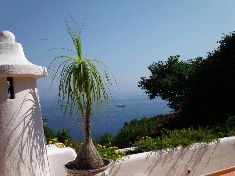 ISCHIA Casamicciola: Villa immersa nel verde, nel silenzio piu' assoluto, holiday rental in Cretaio