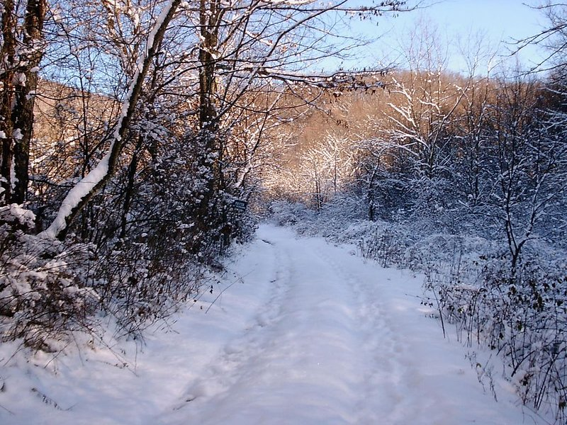 road view after a snowfall