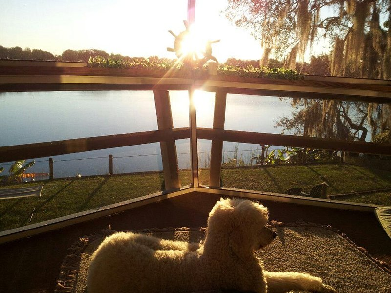 5/3  Pet friendly, fun swimming lake, holiday rental in Lake Placid