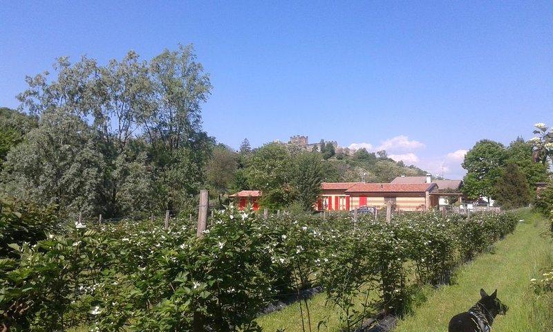 B&B Agriturismo Lago d'Iseo e Franciacorta  in campagna - Campo, holiday rental in Zandobbio