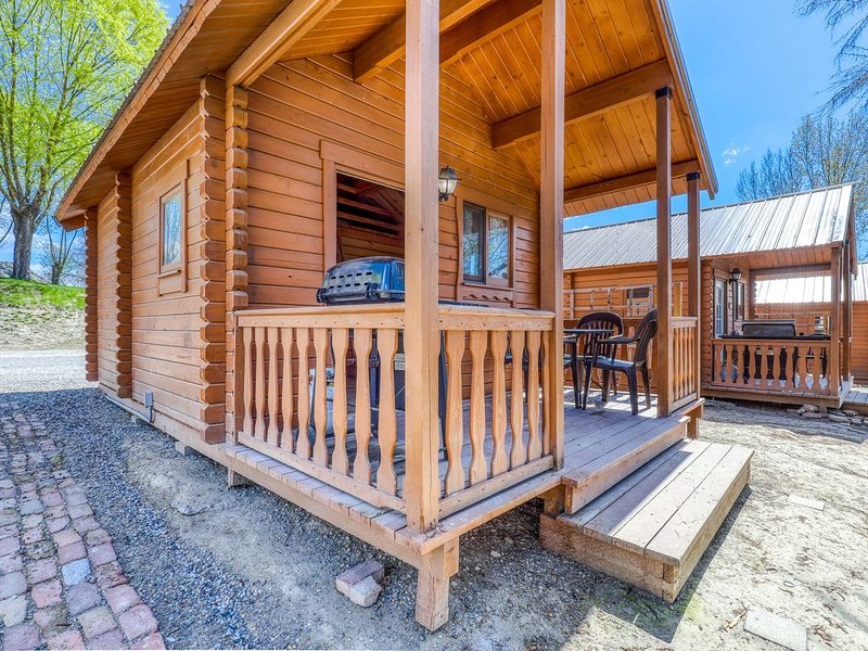 Dog-friendly, lakefront dry cabin w/ a private BBQ & shared resort amenities!, location de vacances à Electric City