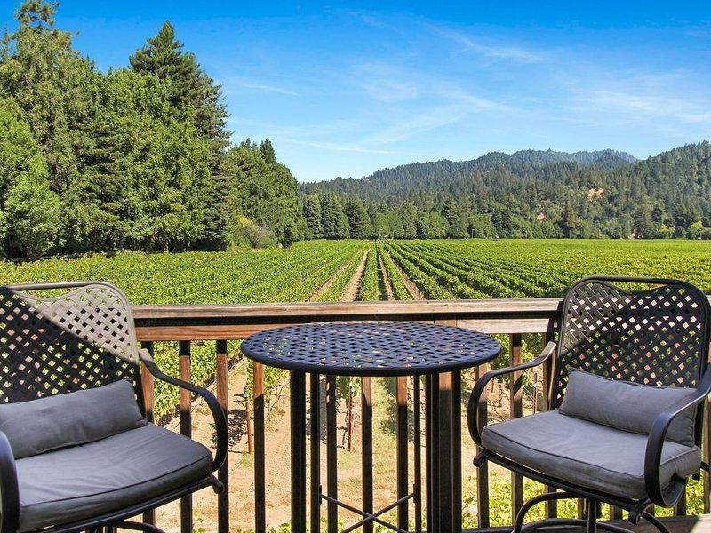 Vineyard view studio cottage by river, near town & winetasting, location de vacances à Guerneville