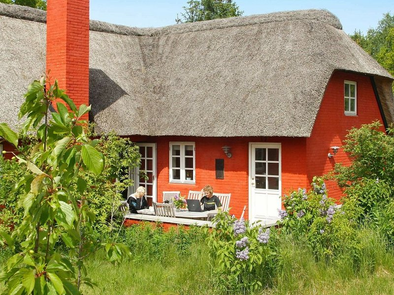 Chic Holiday Home in Jutland with Sauna, holiday rental in Skovgaarde