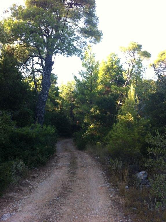 Route d'accès.