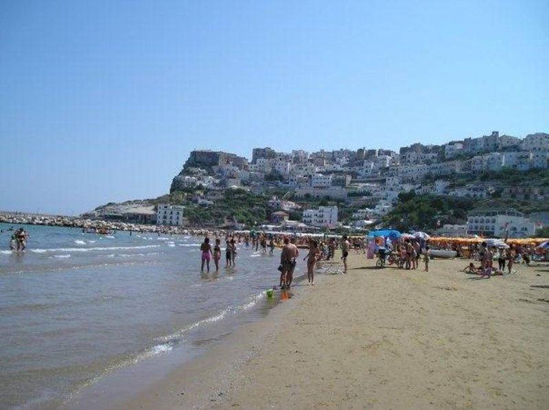 Appartamenti in riva al mare forniti di tutte le necessità,forno,lavastoviglie, holiday rental in Province of Foggia