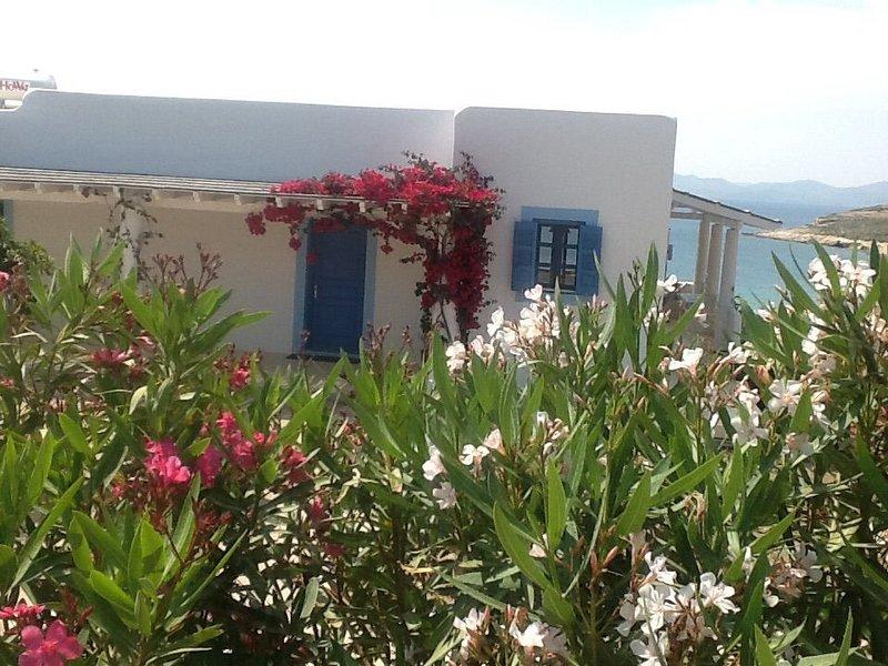 lipsi Casa sul mare sulla spiaggia di koklakur, casa vacanza a Agia Marina
