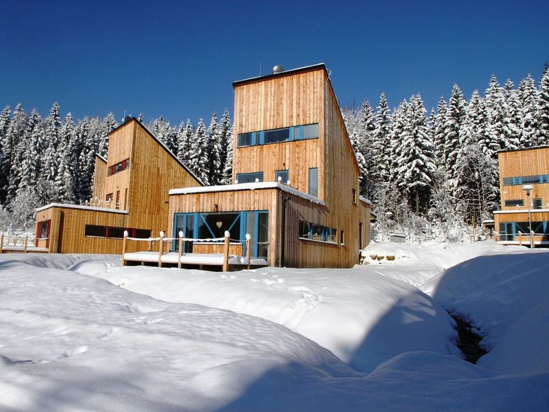 Spacious chalet in residential area, modern, luxury interior, large terrace, vacation rental in Przecznica