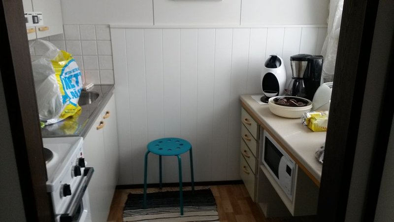 Appartment in the middle of beatiful Etelä-Savo landscape, with kindly people., vacation rental in Toivakka