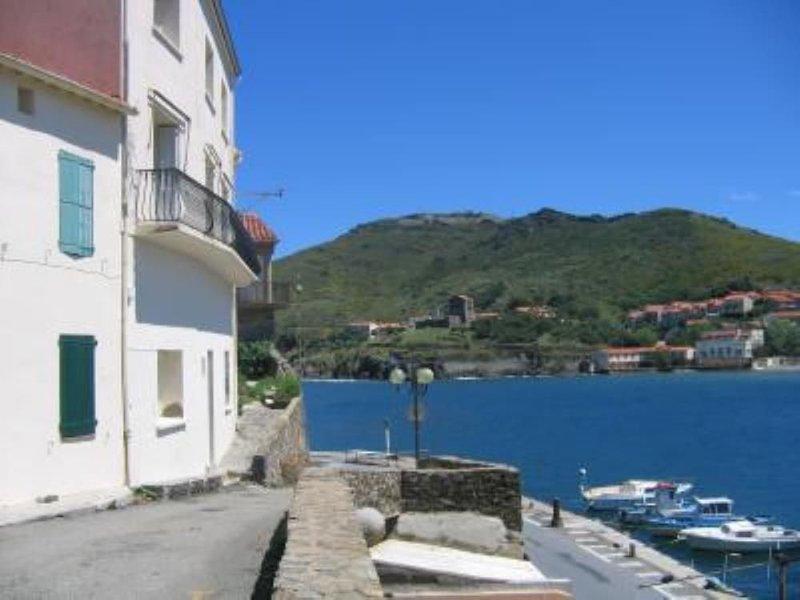 T2 rue du soleil donnant sur le port, à proximité de COLLIOURE, holiday rental in Port-Vendres