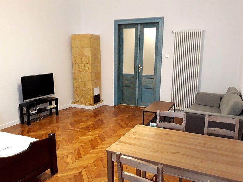 Blue Door Apartment Old Podgórze, holiday rental in Wieliczka