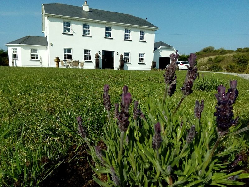 Lavender House is in the beautiful country side of Co. Mayo, close to Swinford, location de vacances à Claremorris