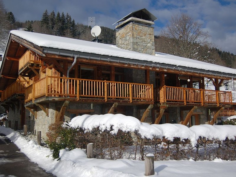 Modern Comfortable Chalet, vacation rental in Les Gets