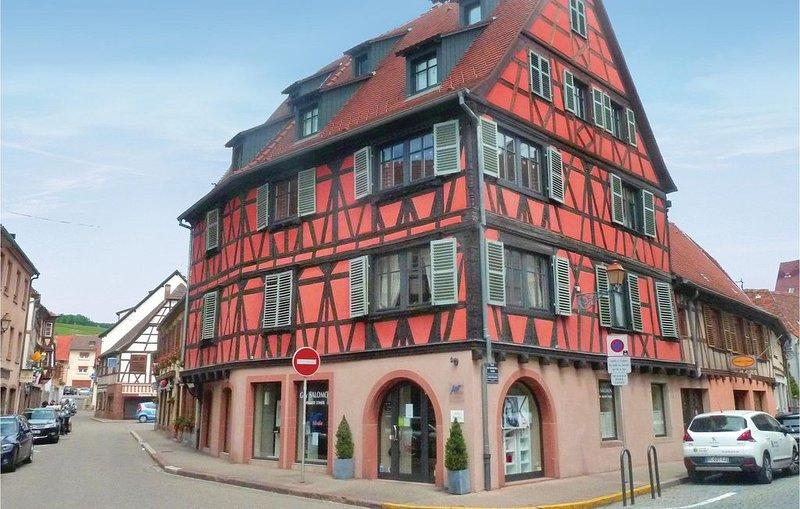 1 Zimmer Unterkunft in Molsheim, holiday rental in Dahlenheim