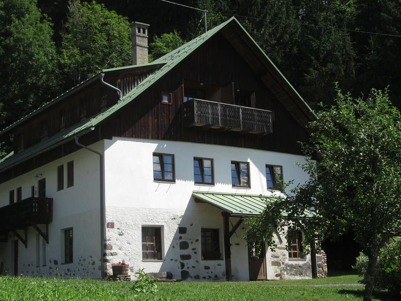 Comfort Apartment mit 2 Schlafzimmern, holiday rental in Kotschach