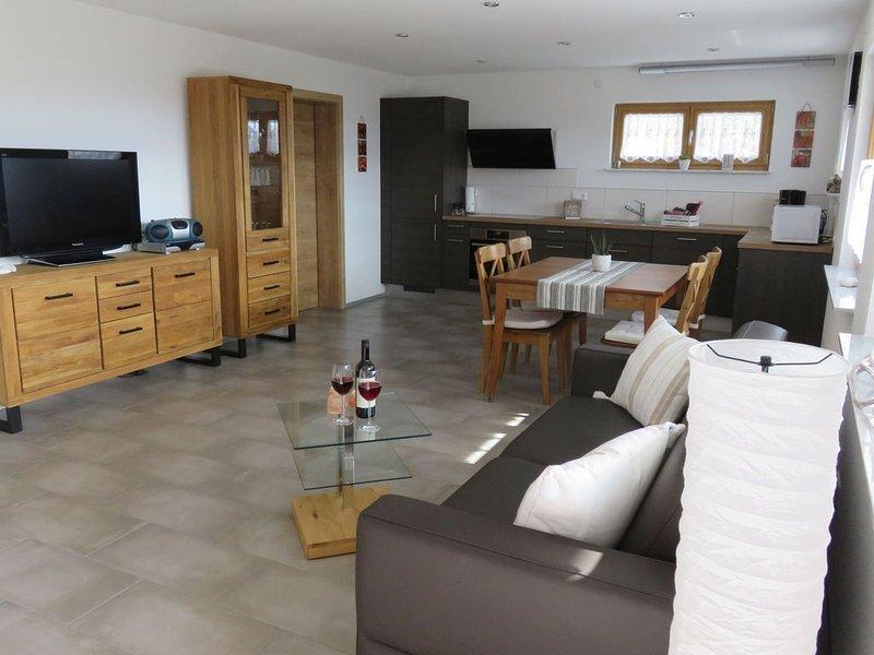 Ferienwohnung, 60qm, Terrasse, 1 Schlafzimmer, max. 4 Personen, vacation rental in Endingen