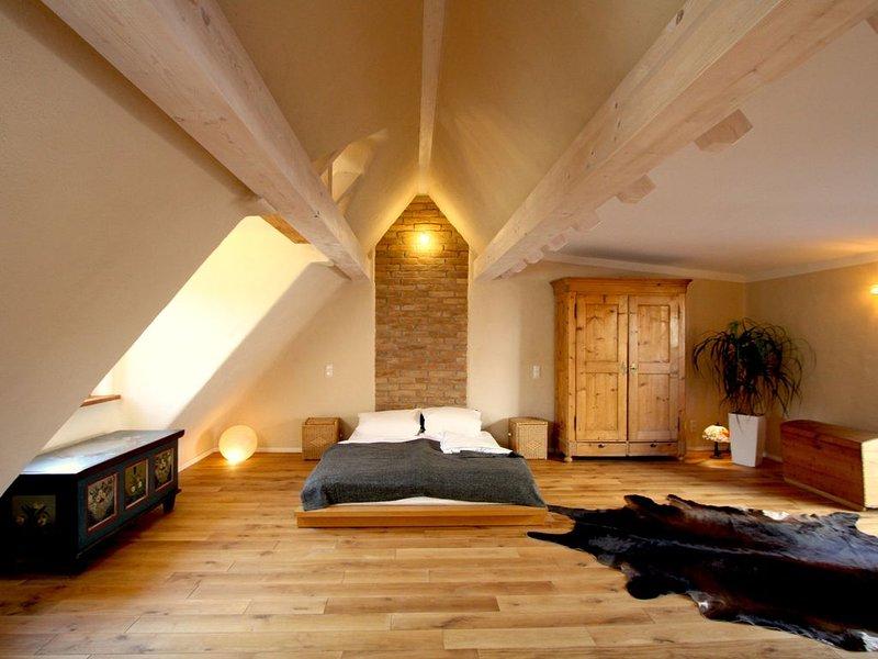 ganzes Altstadthaus 'Hexegässl' ökologisch saniert, sehr ruhig und  sehr zentral, vacation rental in Schwetzingen