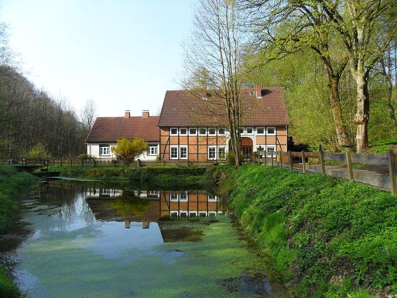 Ferienhaus am Wasserfall, holiday rental in Heessen